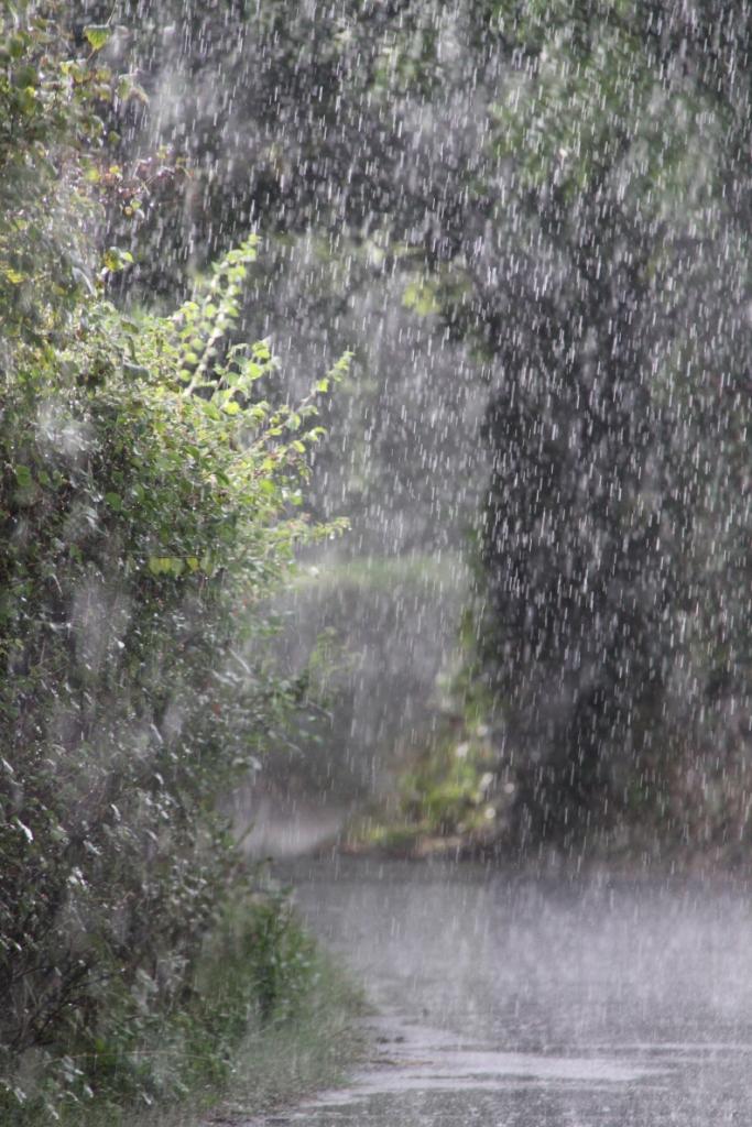 sudden-shower