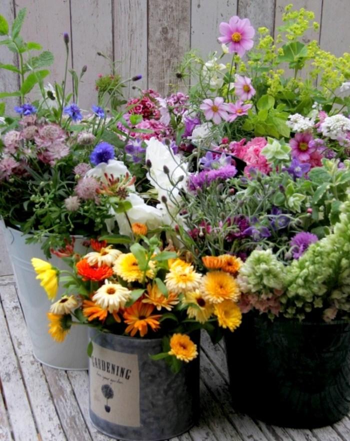 lakes & 1st flowers 033 - Copy