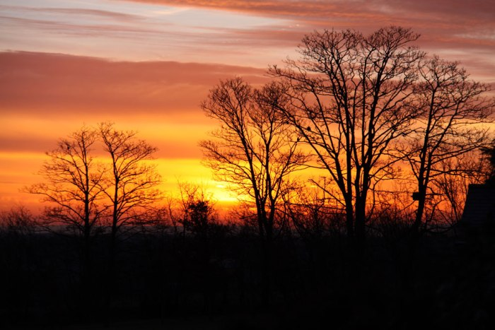 january-sunrise-later
