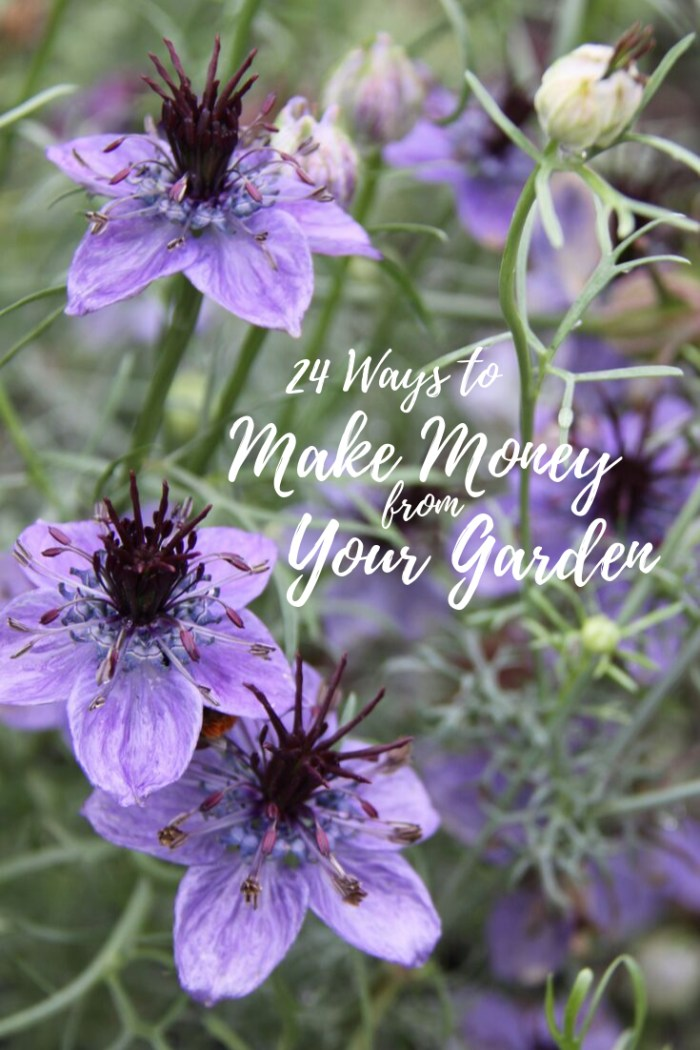 24 Ways to Make Money from Your Garden