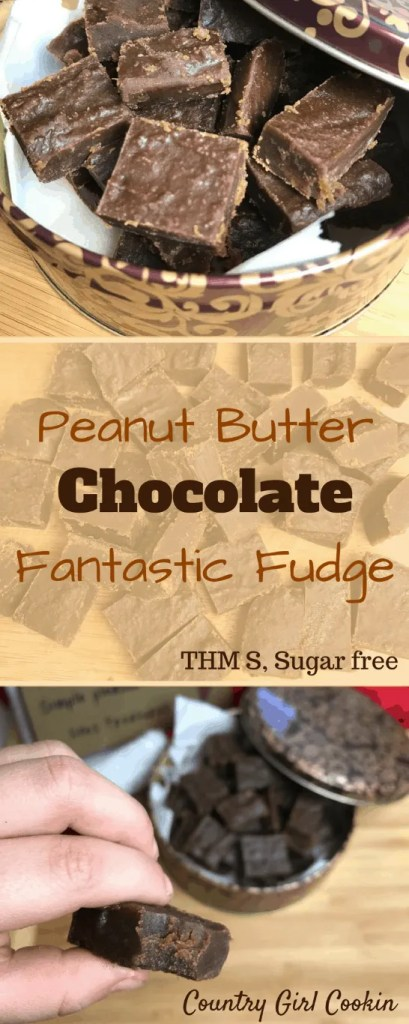 Peanut Butter Chocolate Fantastic Fudge (THM-S, Sugar Free)