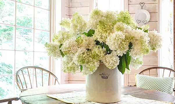 Cutting And Drying Hydrangeas Country Home Blooms