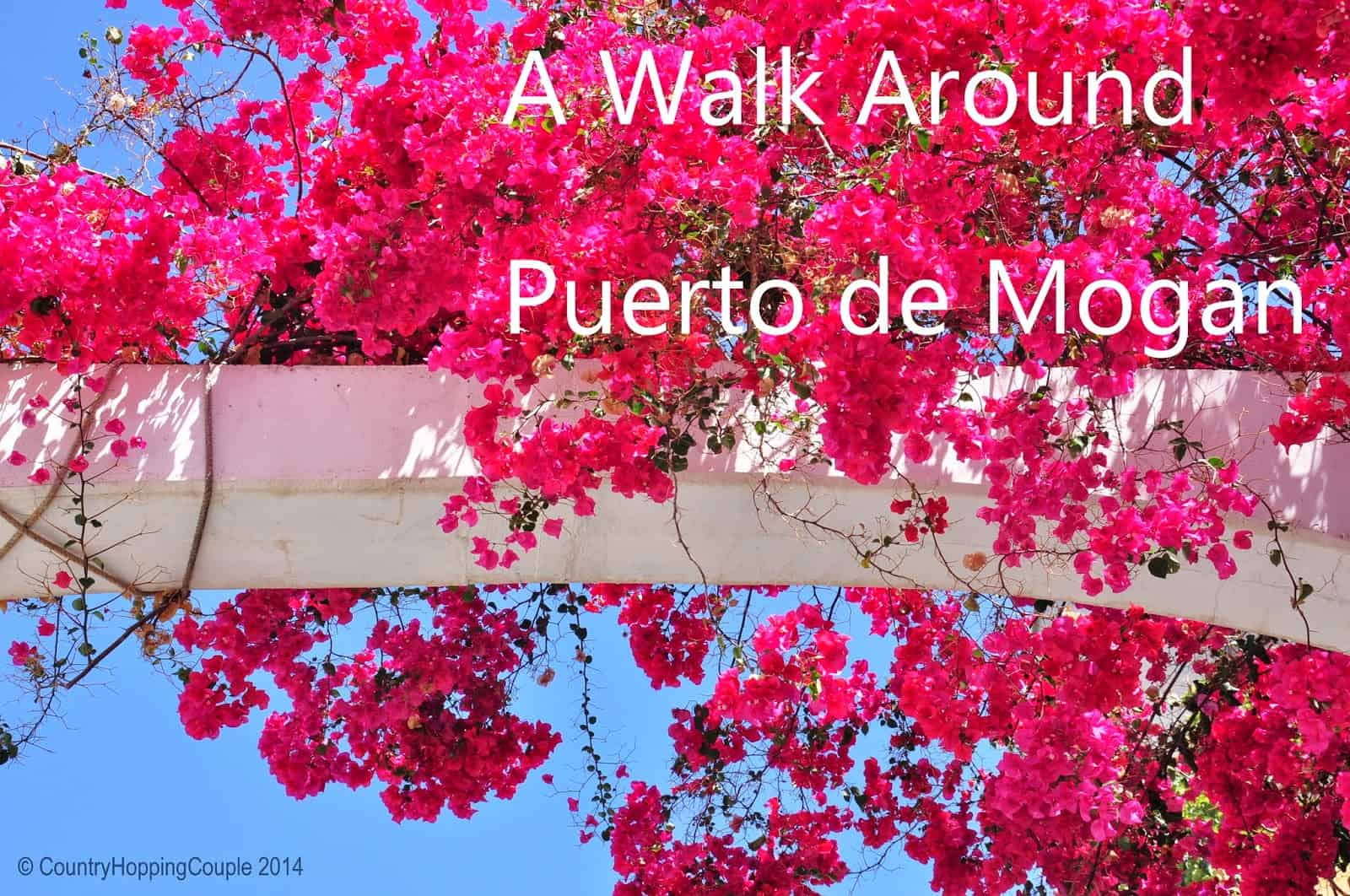 A walk around Puerto de Mogan