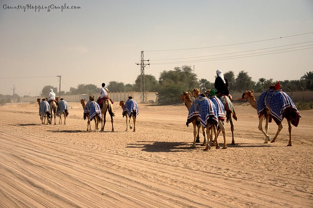 Photo Of The Week: Rural Scenes from Dubai