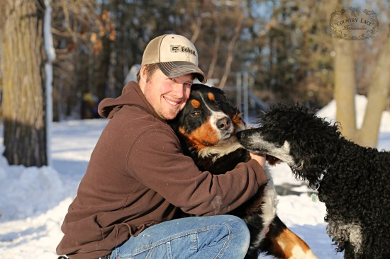 AKC Bernese Mountain Dog