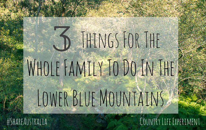 3 things for the family to do in the lower mountains