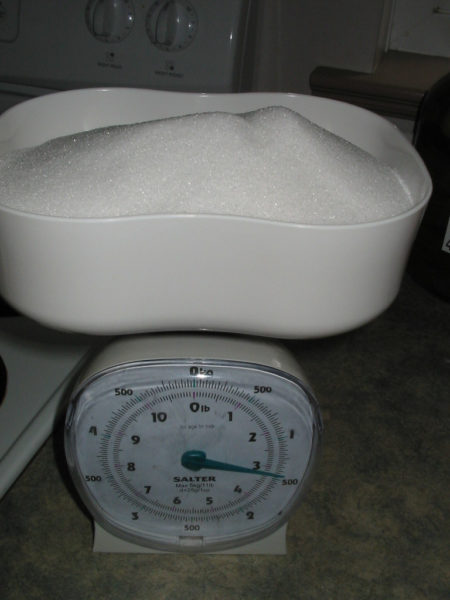 Sugar being weighed before adding to Rhubarb wine.