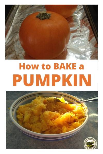 a pumpkin on a baking sheet and a bowl of pumpkin puree with a spoon