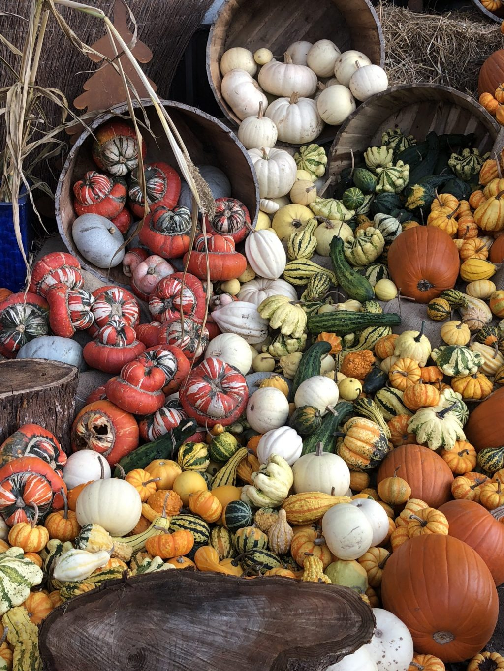 baskets of pumpkins for sale at market