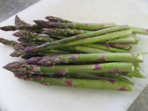 Asparagus likes to grow in a weed free bed of its own. This perennial vegetable can live for 30 years!