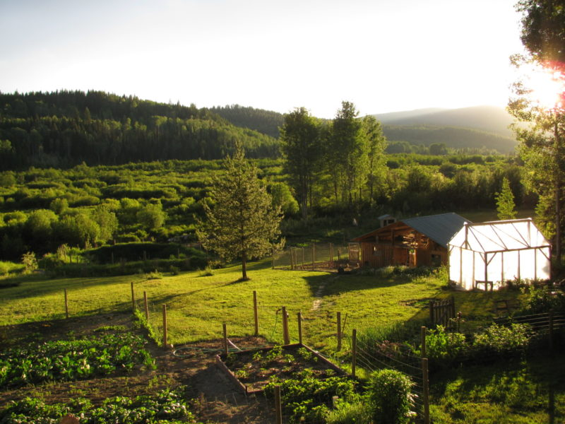 country living, setting goals for your homestead