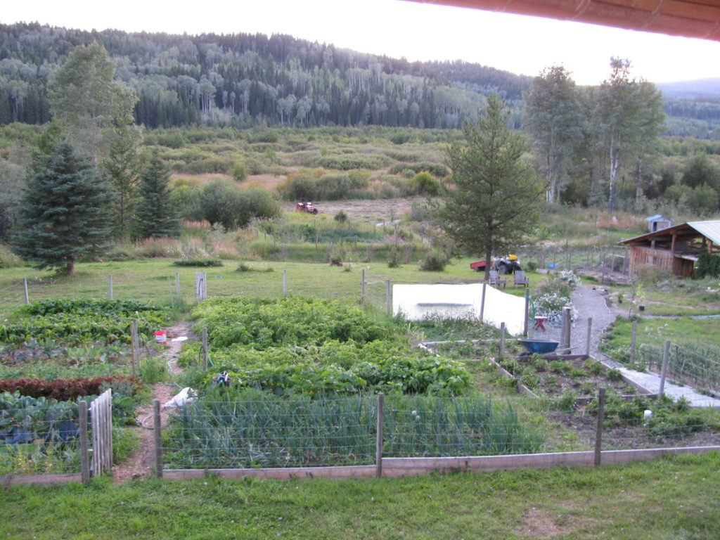 a garden full of growing vegetables surrounded by fencing
