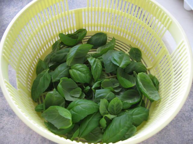 how to dry herbs, basil, oregano, laurel, lovage
