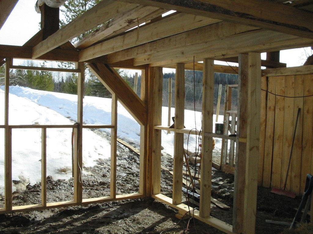 building a barn, raising chickens