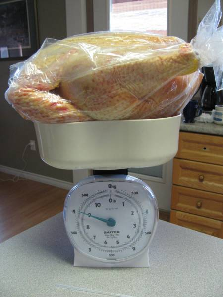 A 9 pound homegrown chicken ready for the freezer