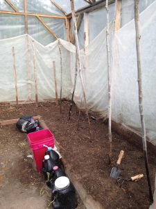 Getting Ready to Plant the Greenhouse