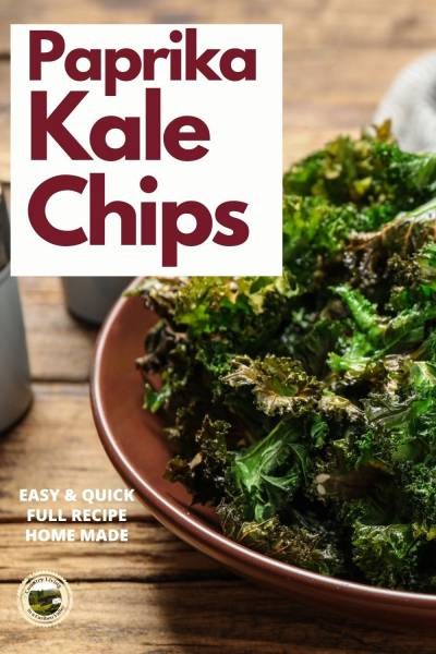 dehydrated kale chips in a bowl on the table