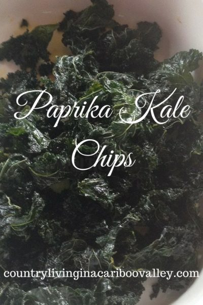 Paprika Kale Chips ready for eating.