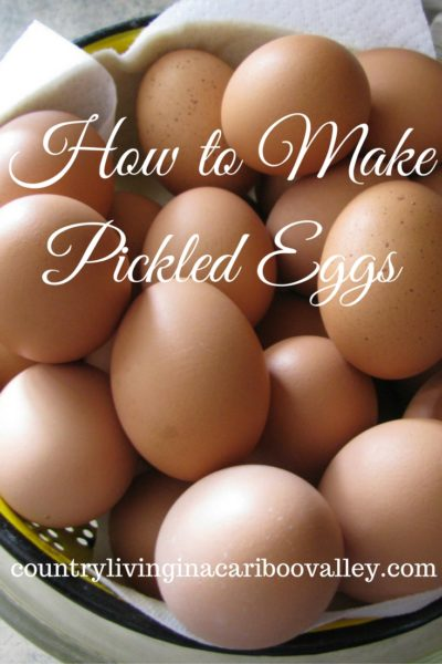 how to make pickled eggs, chickens, eggs