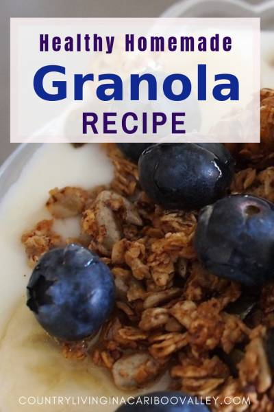 granola and berries on top of yogurt in a bowl