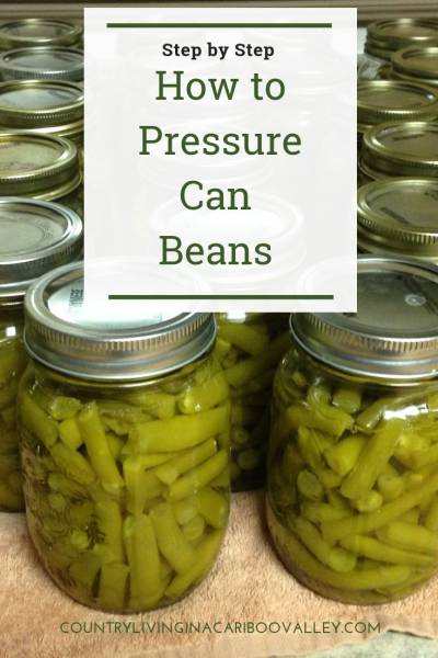 How to pressure can beans. Step by step Safety tips for canning beans at home. #canning #pressurecanning #food #waterbathcanning #selfsufficiency #gardening
