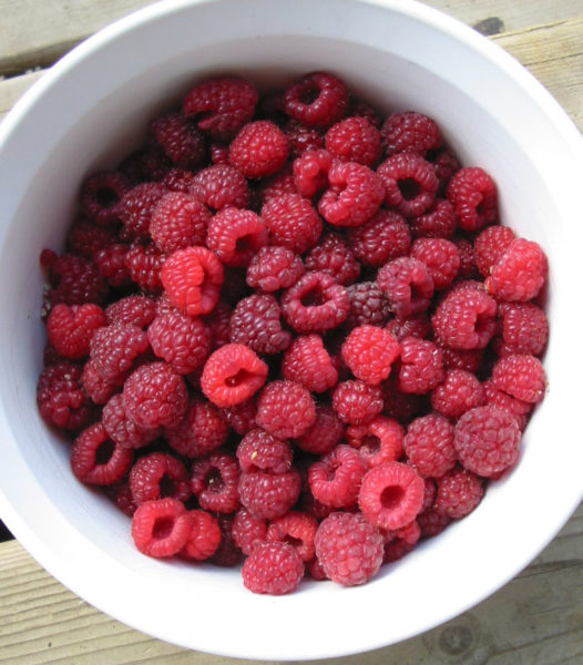raspberry recipes, berry recipes,