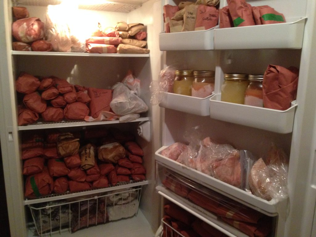 A clean and organized deep freezer