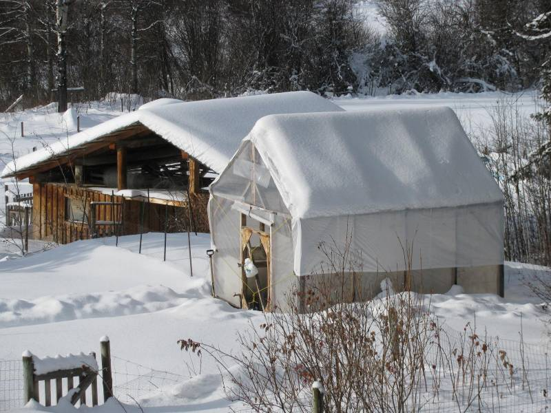 Greenhouse covered in Snow in Winter