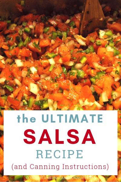 Fresh Salsa being cooked on the stove.