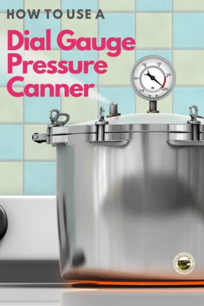 a venting pressure canner on a stive