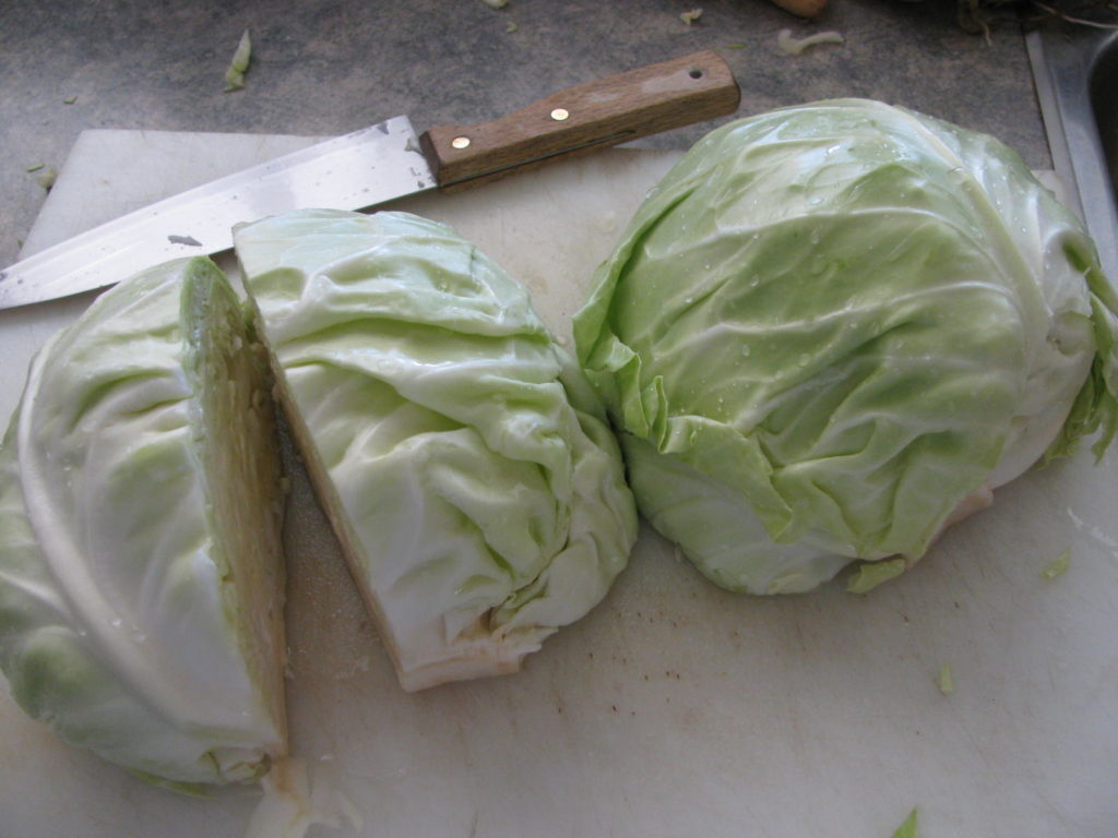 Large heads of cabbage on the counter ready to slice