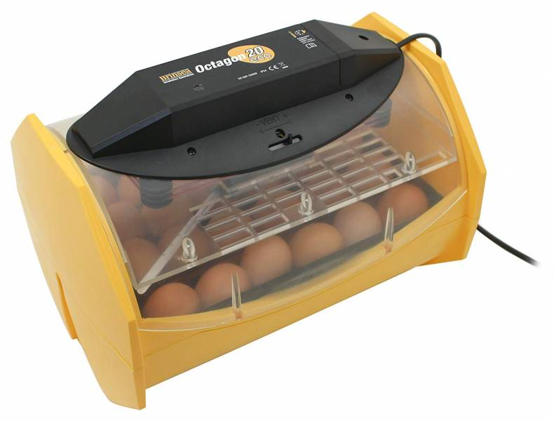 an incubator holds eggs, perfect gift for a chicken lover