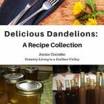 Dandelion jelly sits beside bottles of dandelion wine