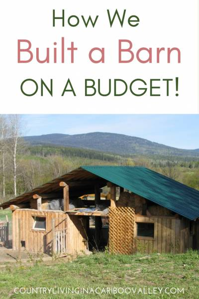 A owner built barn for chickens, goats, sheep, cows and horses