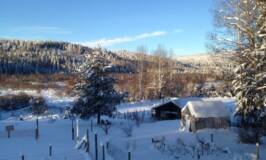 The very best posts for 2017 from Country Living in a Cariboo Valley #homesteading #farm #selfsufficiency