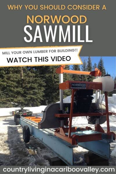 sawmill for cutting logs into lumber