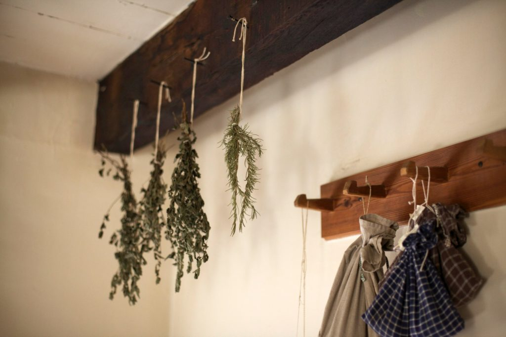 herbs drying on a rack
