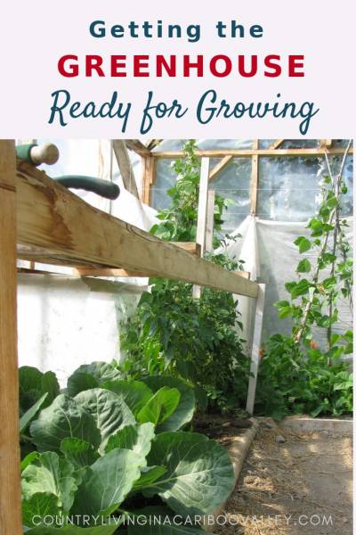 Spring maintenance for the Greenhouse. Get your greenhouse ready for garden season. Here's what we do to get our Greenhouse ready for Spring. #gardening #greenhouse #DIYbackyard