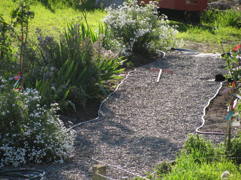 The path after gravel is laid, with edging and perennial flowers along side