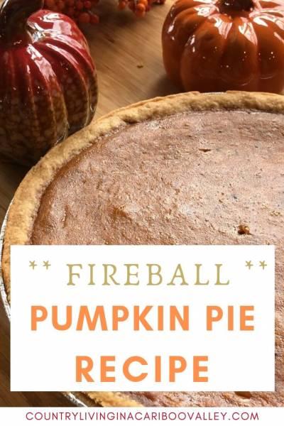A Pumpkin Pie sits amongst fall decorations