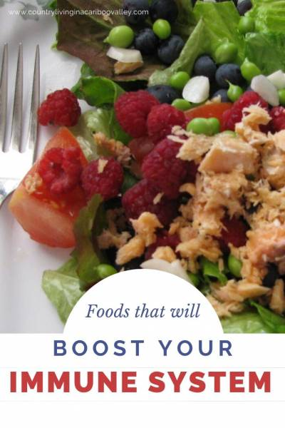 healthy food to boost your immune system