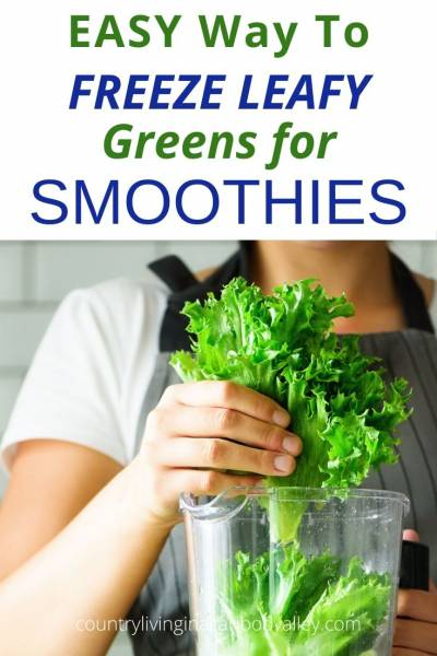 Freezing Greens for Smoothies