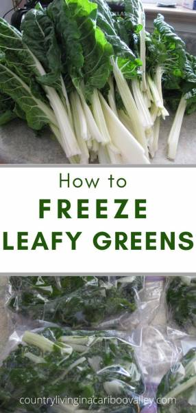 Freeze Leafy Greens