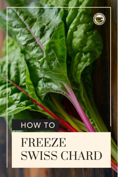 Freeze Swiss Chard leaves by blanching first.