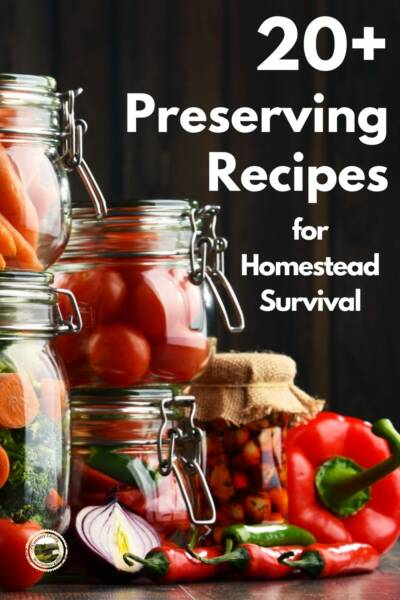 Preserving recipes including jars of canned carrots and tomatoes