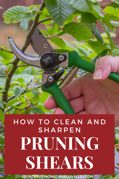 clean and sharpen pruning shears to make them last
