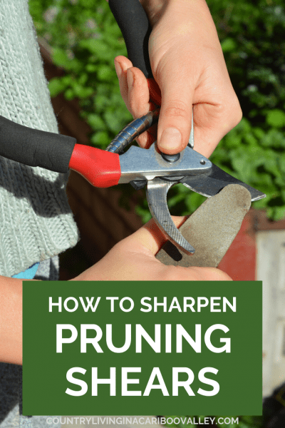 Sharpening Pruning Shears before using