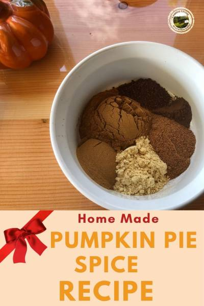 Pumpkin Pie Spice in a bowl.