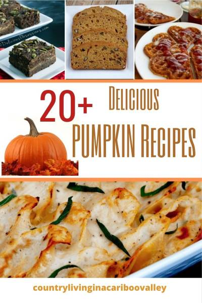 20 best Pumpkin recipes for baking and cooking