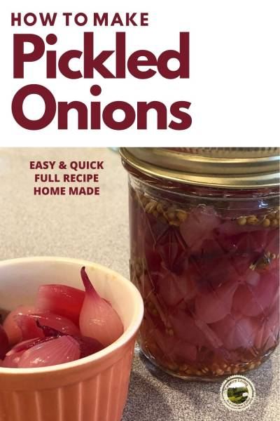 Pickled Onions in a jar and bowl on the counter